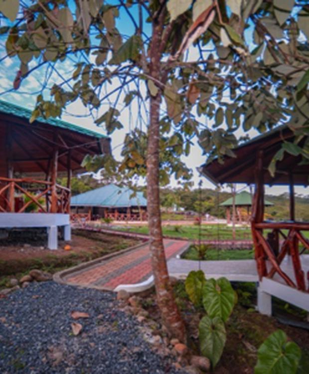 Vista Cabañas 1 y 2 Orkidea Orkidea Lodge Puyo