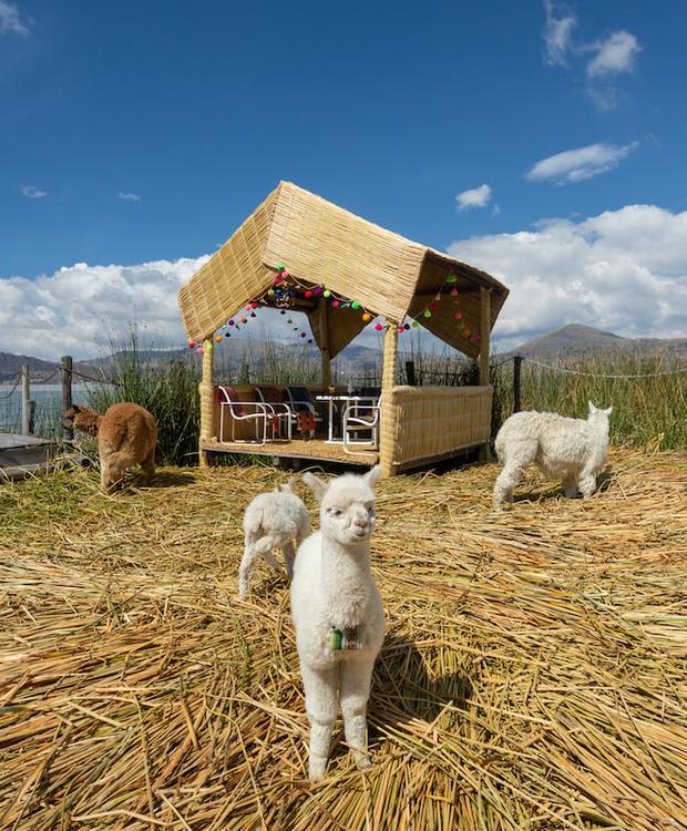 Exteriores Sonesta Hotel Posadas del Inca Puno Puno