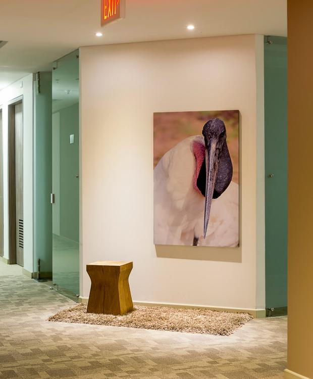 Corridor GHL Style Hotel Yopal Yopal