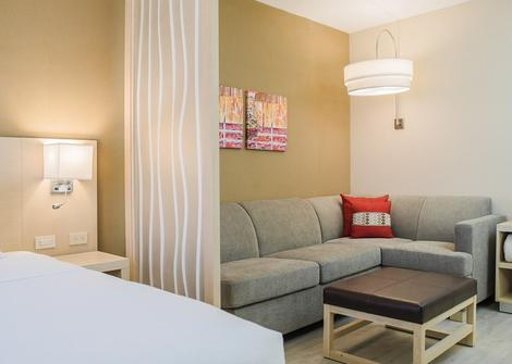 HYATT PLACE KING ROOM (FOR GUESTS WITH REDUCED MOBILITY)/WITH SHOWER (WITH SOFA BED)