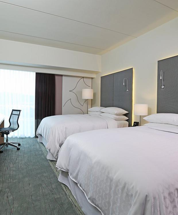 Twin Room Sheraton San José Hotel San José